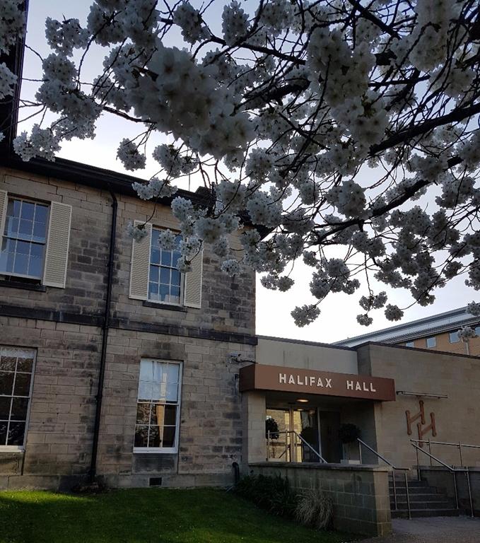 Halifax Hall Hotel - Blossom on the Trees