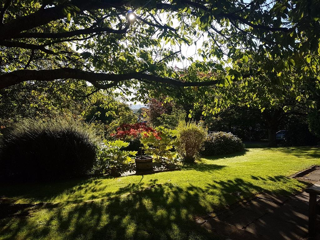 Halifax Hall Hotel - Gardens