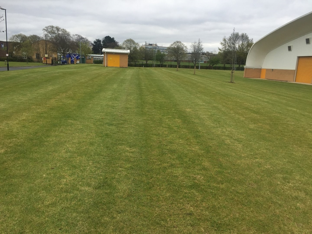 Outdoor Team Building Pitch at Training Ground