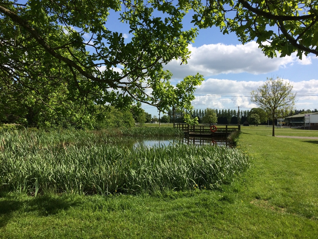 50 acres of grounds including pond