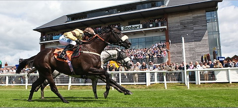 Image result for carlisle races